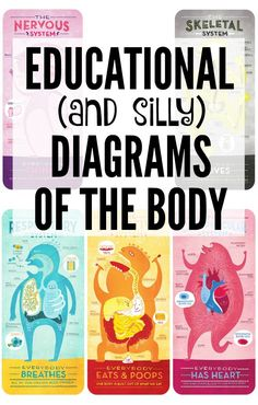 """Illustrator and designer Rachel Ignotofsky creates and sells """"educational and playful art."""" Perfect for science lessons, here are some of her lessons on the human body — the respiratory, digestive, circulatory, nervous, and skeletal systems — in adorable picture form…"""