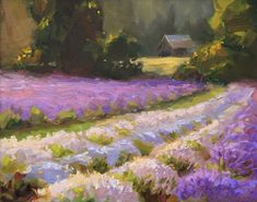 Lavender Landscape Painting - Beautiful Purple Rows at Sunset Oil Painting by Karen Whitworth (9.95 USD) by WhitworthGallery