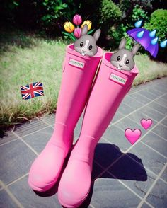 It will protect my peace of mind during the rainy season☔️ #hunter #rainboots #pink #hunterboots