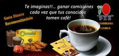 Café y otros productos con ganoderma de DXN: DXN, excelente oportunidad de negocio