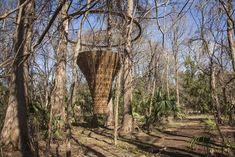 Canopy Tower-John Grade