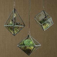Pierre Geometric Terrarium - Tetrahedron - Zinc - Set of 4