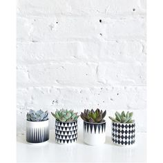 I spy with my little eye the cutest little pot plants from @ispydiy :heartpulse: sorry we just couldn't help ourselves as they are too darn cute! #dtllworkshopsloves #create #succulents #geo