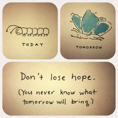 Don't lose hope, you never know what tomorrow will bring.Don't lose hope, you never know what tomorrow will bring. The Words, On Ne Sait Jamais, Quotes To Live By, Me Quotes, Qoutes, Daily Quotes, Quotes Images, Beauty Quotes, Dont Lose Hope Quotes