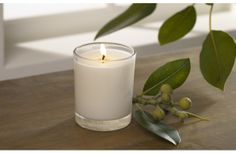 scented candles - native fig