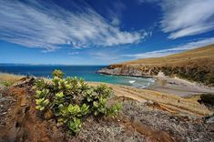 Deep Creek Conservation Park, South Australia | 28 Stunning Australian Places You Need To Visit Before You Die
