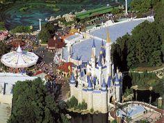 Travel to Disney World where all your dreams come true!