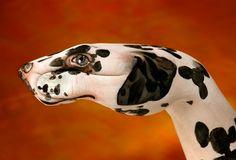 moderne kunst dalmatiner