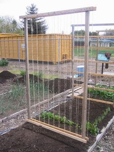 Community Garden Plot #20 - Bean Trellis by startide rising on Flickr