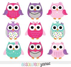 owls pink, purple and teal