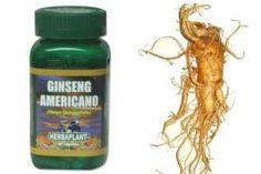 Las increíbles propiedades curativas y energizantes del Ginseng americano, similar pero no igual al ginseng oriental. SIGUE LEYENDO EN: http://alimentosparacurar.com/plantas-medicinales/n/211/el-ginseng-americano-y-sus-propiedades.html