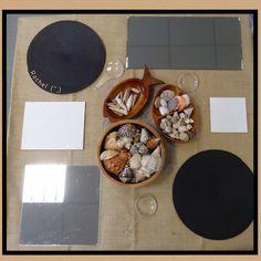 "Invitation to explore shells & create transient art... from Rachel ("",)"