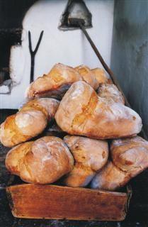 Alentejo bread from Portugal