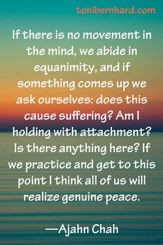 """Thai forest monk and teacher, Ajahn Chah. Practice by asking, """"Does this cause suffering?"""" """"Am I holding with attachment?"""""""
