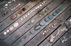Sea Ranch ~ the natural world. Wood and rocks and shells