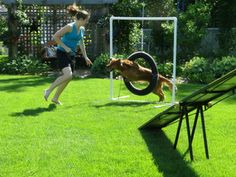 Practicing agility obstacles in the backyard - fun for both of us!
