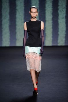 Raf Simons-Dior