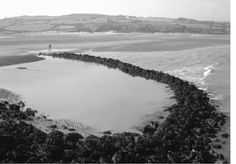 An ancient fish trap in its present condition at Llygwy Bay, Anglesey in north Wales that is located near to a settlement thought to date from around AD 300. Fish that swim over the wals of the trap at high tide are trapped as the tide recedes, whereupon they are easily collected by hand at low-water. Jennings,S., M.J. Kaiser, and J.D. Reynolds. 2001. Marine Fisheries Ecology. Blackwell Science, Malden, MA. 417 p.