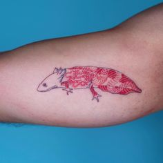 Oozy is a South Korean tattoo artist. He usually makes Blackwork tattoos. Seal Tattoo, Tattoo On, Piercing Tattoo, Piercings, Baby Tattoos, Funny Tattoos, Body Art Tattoos, Pretty Tattoos, Beautiful Tattoos
