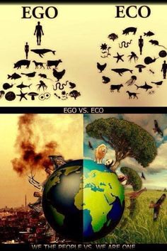 Eco > ego--always, always, always. Without our Mother Earth, we have nothing; As human beings, we are blessed with the capability to feel empathy; we should be extending that empathy to everything + everyone we meet Our Planet, Save The Planet, Planet Earth, Nature Quotes, Life Quotes, Funny Quotes, Quotes Quotes, Culture Art, Meaningful Pictures