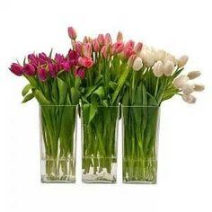 My favorite flowers <3