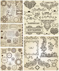 Romantic floral ornaments vector
