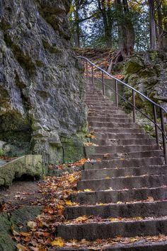 Steps to the Elora Gorge. O Canada, True North, The Province, Day Trips, Ontario, Toronto, Photo Ideas, Places To Go, Beautiful Places