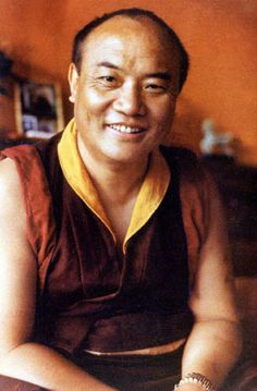 Whenever you do something, obstacles will invariably come and you can go through them. Obstacles are a sign of success. —16th Karmapa