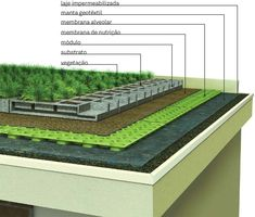 Green roofer, living roofs, vegetated roofs, ecoroofs — whatever it is that you need to call these items. Green Architecture, Sustainable Architecture, Sustainable Design, Architecture Details, Landscape Architecture, Residential Architecture, Contemporary Architecture, Pavilion Architecture, Rooftop Deck