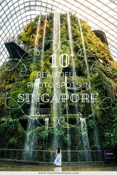 10 beautiful photo spots in Singapore www. Singapore Travel Tips, Stay In Singapore, Singapore Itinerary, Singapore Trip, Singapore Garden, Singapore Sling, Best Places To Travel, Places To See, Big Ben