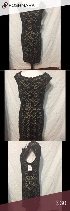 Connected Apparel Black Lace Bod Con Dress Sz 10 Connected Apparel Black Lace Dress Size 10 Missing Belt Gently worn and in very good condition.  Measurements when laid flat:  19 inches from armpit to armpit  17 inches across smallest part at waist  about 21 inches across widest part at hip  40 inches from top to bottom  Need a dress for a special occasion and don't want to spend a lot of money? Check out my other listings. You just might find the perfect dress!  Please contact me…