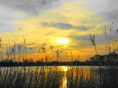 Zonsondergang / Natuurgebied