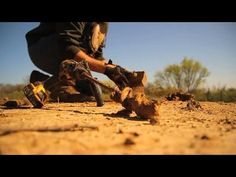 Step By Step Dirt Hole Set For Coyote Trapping- The Management Advantage #69 - YouTube