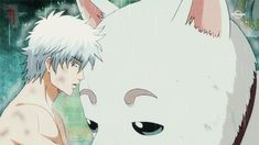 Top 20 Cutest Anime Mascot Characters According to Japanese Fans Sadaharu Gintama