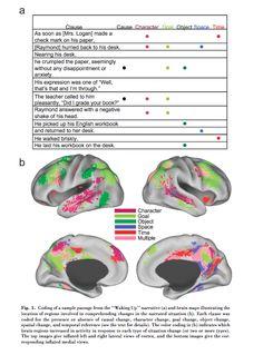 """Stories and the brain study: Fantastisk artikel - Viden pakket ind i en god historie får 3 gange flere gennemlæsninger, fordi de """"føler"""" historien i stedet for bare at forstå"""