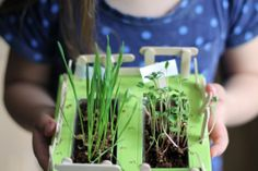 Farming with Kiwi Crate | Chris Loves Julia