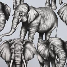 Magnificent Herd Wallpaper
