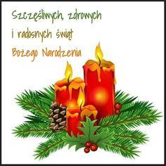 Kartka 🌲🎀🎄 Candles, Fruit, Christmas, Photography, Xmas, Photograph, Fotografie, Candy, Navidad