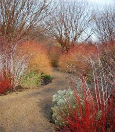 Autumn/Winter Gardens