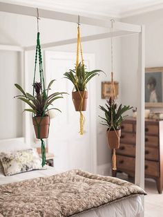 Love the plants hanging from bed frame!