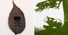 A Caterpillar Having Lunch Inspired Me To Start Creating Leaf Cutting Art