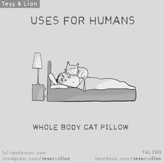 Tess and Lion Crazy Cat Lady, Crazy Cats, I Love Cats, Cool Cats, Cat Jokes, Cat Comics, Cat Character, Cat Pillow, Here Kitty Kitty