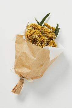 Mini Preserved Floral Bouquet by Anthropologie in Yellow, Decor Hydrangea Bouquet, Blush Bouquet, Dried Flower Bouquet, Dried Flowers, Yellow Bouquets, Floral Bouquets, Mustard Flowers, Dried Eucalyptus, How To Preserve Flowers