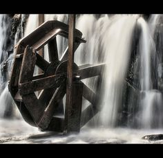 Lily's Water Wheel