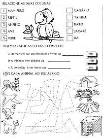 Projeto Meio Ambiente Para Educacao Infantil E Series Iniciais