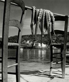 "kvetchlandia: ""Herbert List Octopus, Ionian island of Corfu, Greece 1938 "" Corfu Greece, Mykonos Greece, Athens Greece, Herbert List, Santorini, D Day Landings, Harper's Bazaar, Venice Travel, Photo Store"