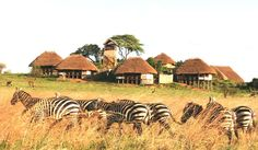 Apoka, a lodge in the South-western sector of Kidepo Valley National Park in Uganda.