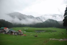 Mini Switzerland Of India, Khajjiar, Himachal Pradesh...Khajjiar, often called as India's Switzerland, is a hill station in Chamba District of Himachal Pradesh, India. Khajjiar sits on a small plateau with a small stream-fed lake in the middle that has been covered over with weeds. The hill station is surrounded by green meadows and dense forests. It is about 6,500 feet (2,000 m) above sea level.