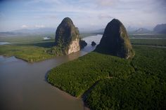 Mangrove dans la baie de Phang Nga, province de Phang Nga, Thaïlande (8°20' N – 98°30' E).