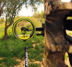 Best Single Pin Archery Sight